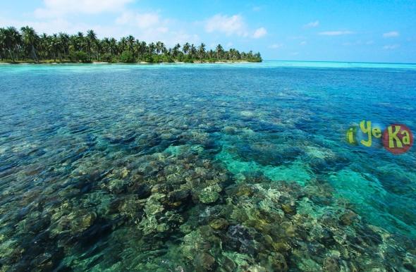 Beningnya air di pulau menjangan kecil